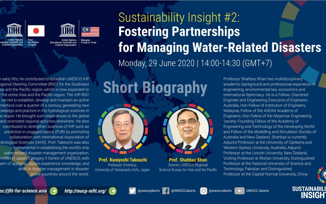 Sustainability Insight #2: Fostering Partnerships for Managing Water-Related Disasters